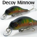 DECOY_MINNOW_2