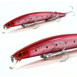 DANSEL BIG CATCH 17CM / 27GR  FLOATING D15